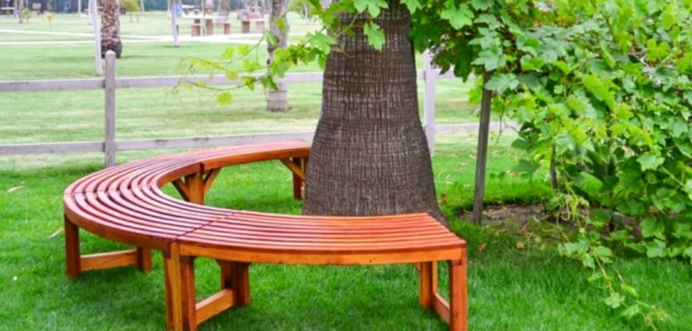 tre benches with seats around